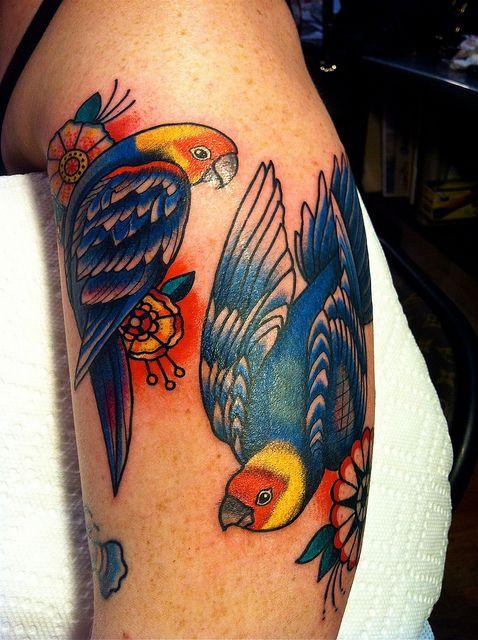 love these parrots..
