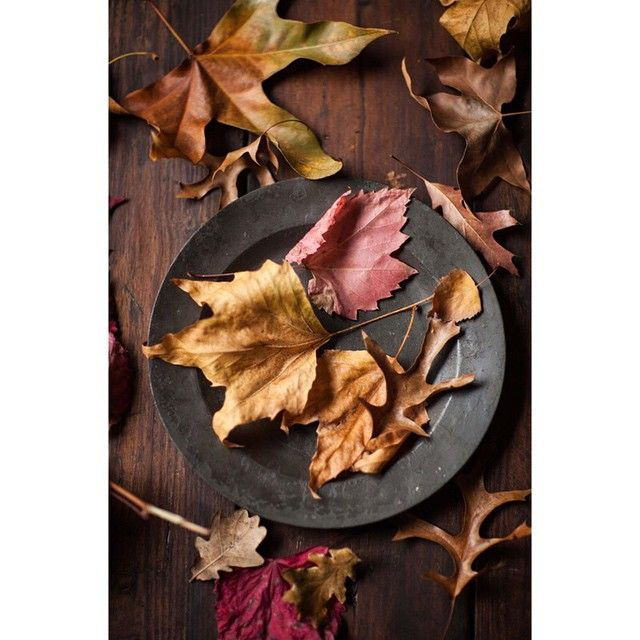 I've fallen more in love with autumn this year and gathered these leaves when I visited #Franschhoek last week. I think I'm going to press them in my heavy books. Do you have any tips on how I should do this? Maybe I'll make cards with them #autumn #leaves #photography