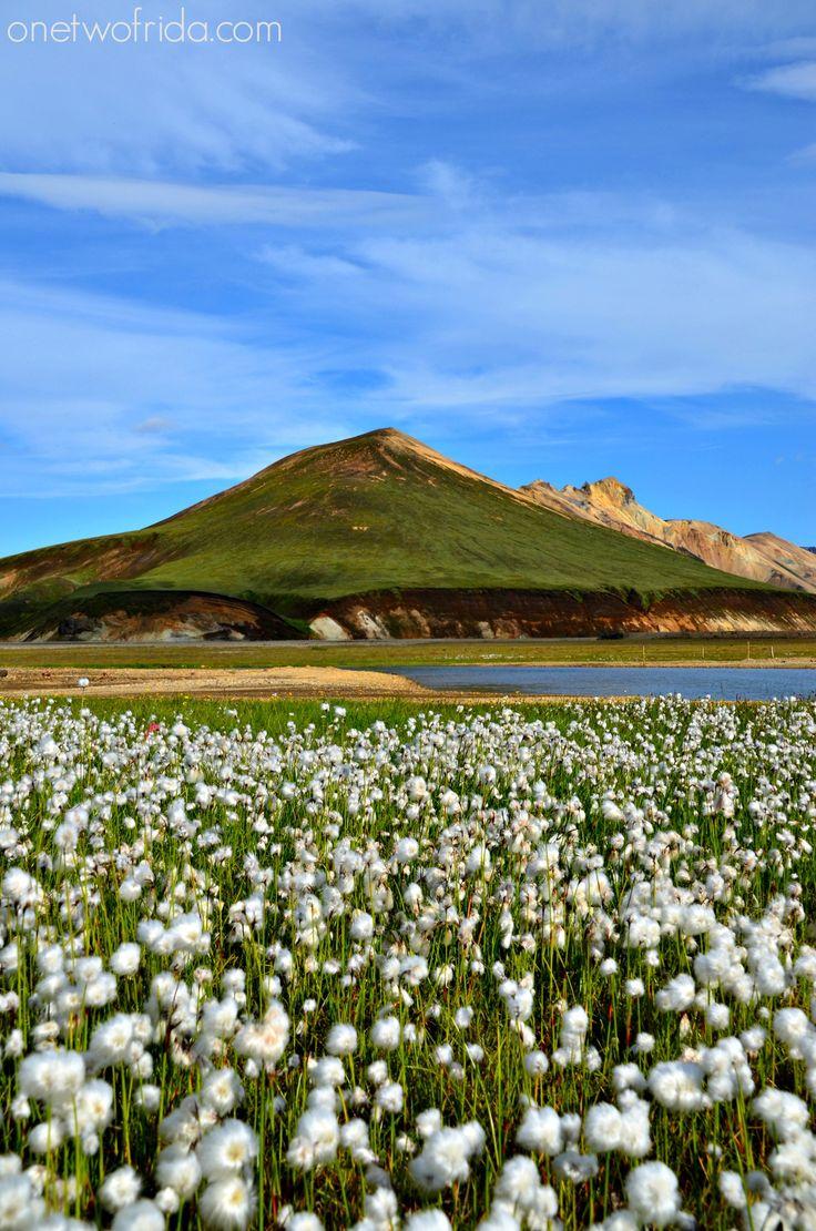 Landmannalaugar - Islanda
