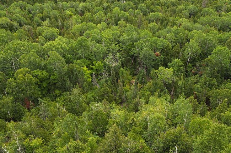 Ontario Landscape - Josie Nicole Photography