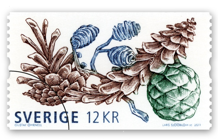 **sverige: ️Stamps ️, Pinecones, November 2011, Philately, Pic Stamps, Mom S Home Sweden, Cone Drawings, Postage Stamps