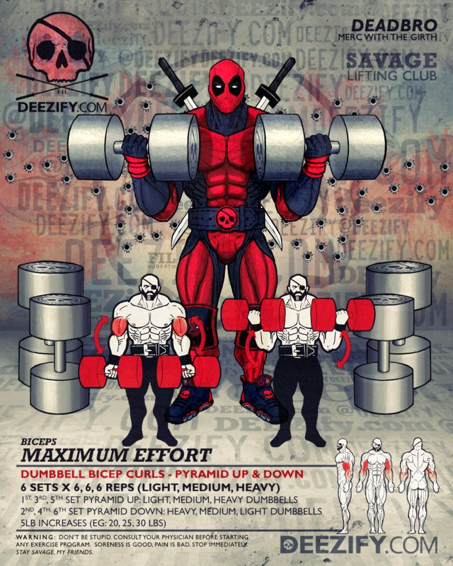 bicep exercise: dumbbell bicep curls with deadpool