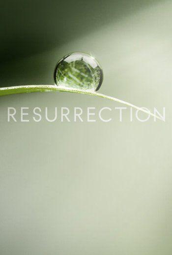 Resurrection (TV Series 2014– ) Samaire Armstrong, Landon Gimenez, Matt Craven, Omar Epps ...