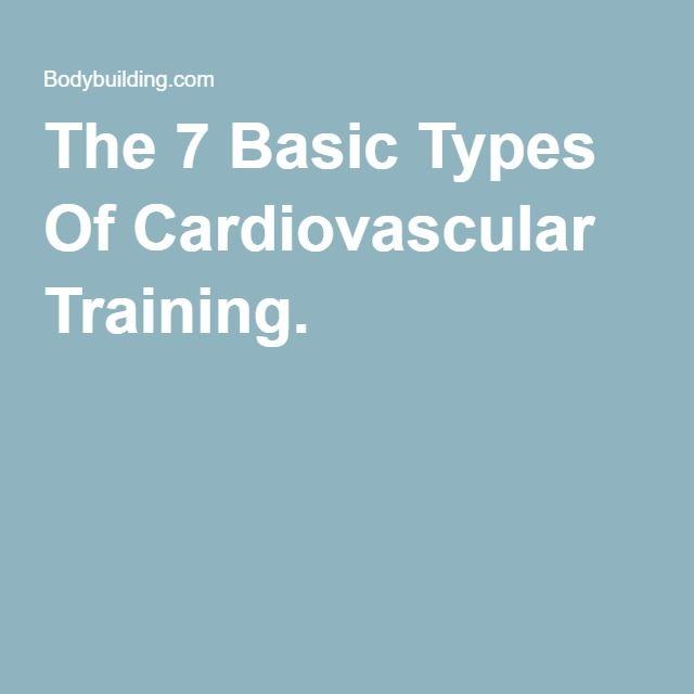 The 7 Basic Types Of Cardiovascular Training.