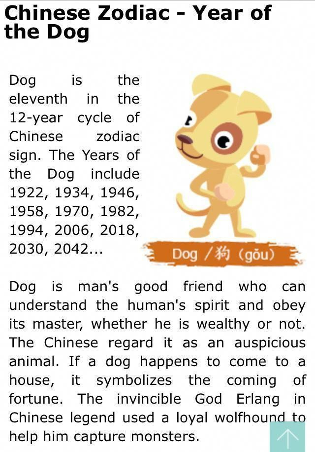 Chinese Zodiac - Dog Year #chinesenumerologyhoroscopes