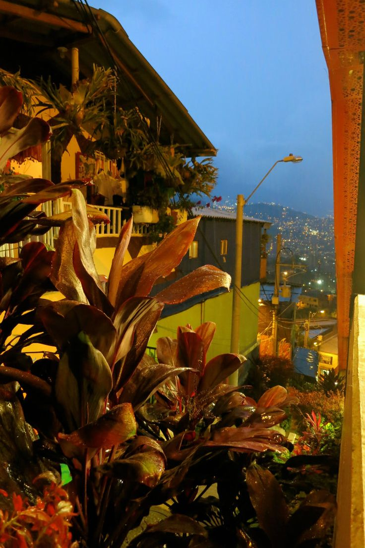 Comuna 13 has developed to a colourful community on the outskirts of the town - and locals do their best to decorate it with many flowers, too! Plus, you have an amazing view over the City. Must see! #view #Medellín #flowers #colombia #comuna13 #travelandmakeadifference