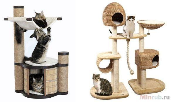 Мебель для животных как бизнес идея с минимальными вложениями в сфере домашнего производства. Домашний бизнес