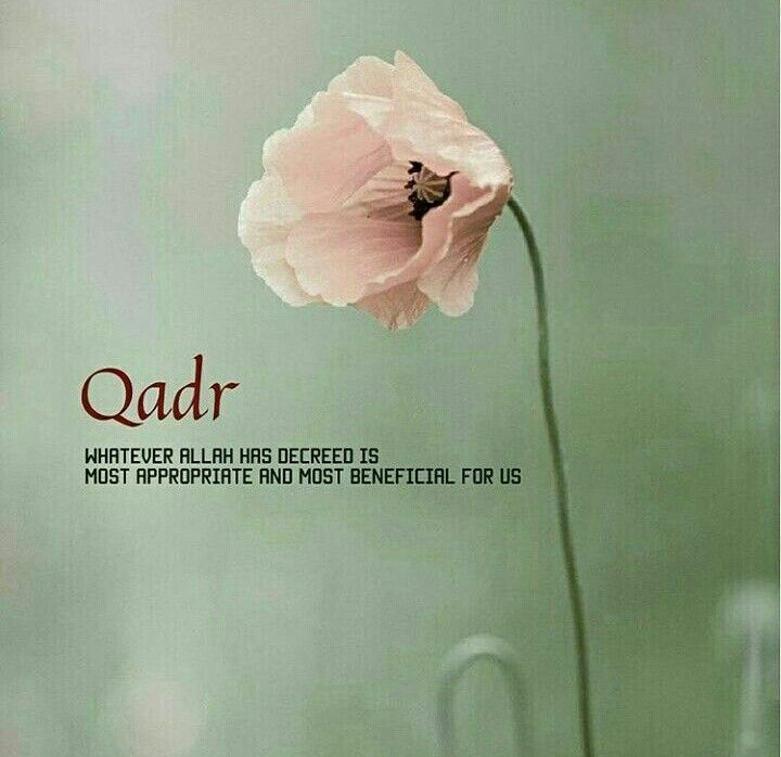 I believe in Qadr. I believe in what He wishes for me. I believe it's for my best. Nothing less.