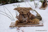 Tove Kristins Hage: Slipp dyra fri.....det er snø....