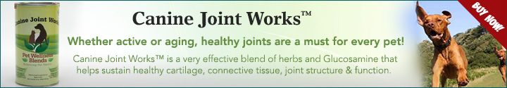 Canin-Joint-Works