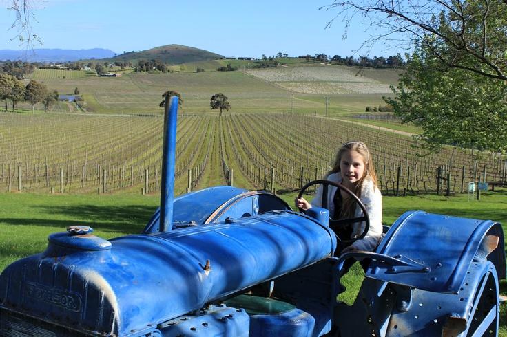 Sarah at De Bortoli Winery - Yarra Valley (Father's Day).