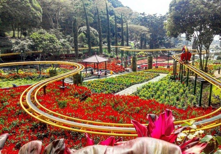 Taman Bunga Di Malang