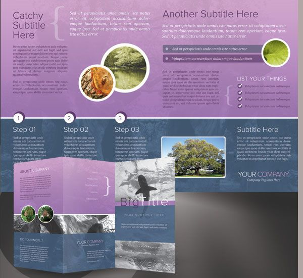 how to make a bifold brochure in indesign