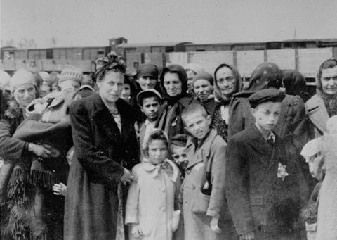 the horrible medical conditions and treatments in the auschwitz concentration camp Former german nazi concentration and extermination camp home page camp hospitals medical experiments treatment auschwitz as a center for the extermination of.