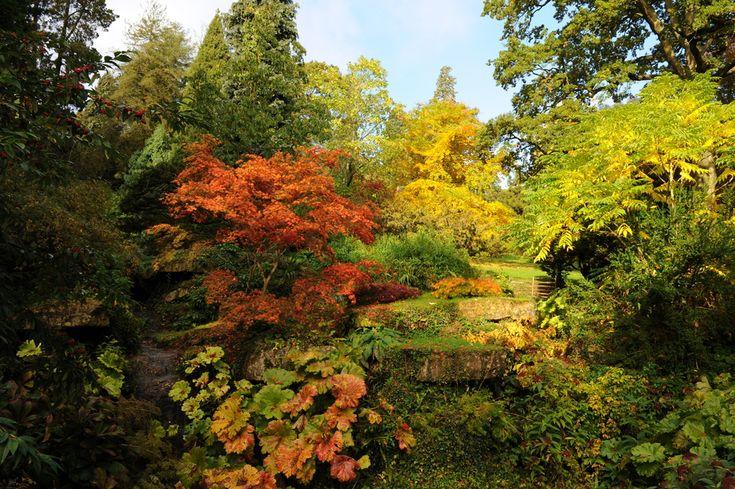 Aki szeret barangolni, annak csodás élményeket ad a lassan őszbe forduló természet. Gyönyörű színek, őszi illatok, gesztenyeízű kirándulások várnak ránk a következő hetekben, érdemes ezt az időszakot kihasználni! Hazánk arborétumai ünnepi, színes díszbe öltöznek októberben, és várják a csodákat kereső,