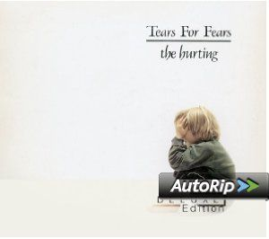 Tears For Fears - The Hurting DELUXE EDITION  #christmas #gift #ideas #present #stocking #santa #music #records