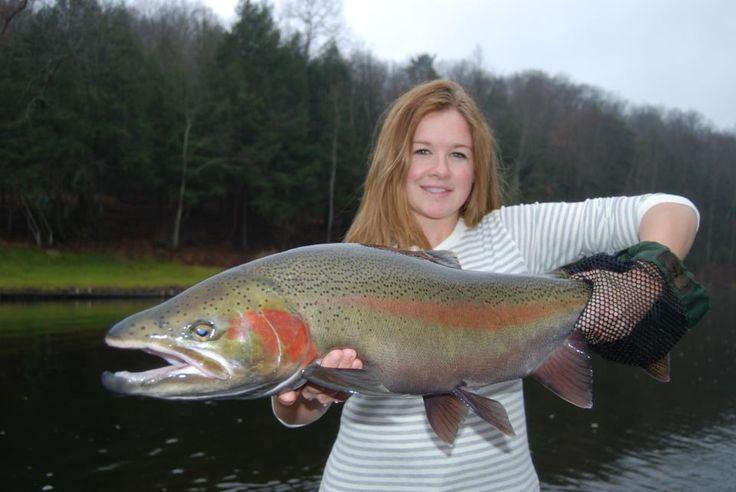 Manistee river salmon steelhead guides tippy dam fishing for Tippy dam fishing