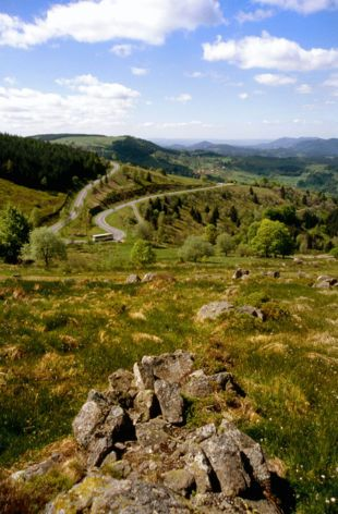 La route de crêtes du massif des Vosges est une destination privilégiée, facile d'accès et pleine d'attraits. pour savourer un grand bol d'air frais…  Paysages éblouissants, courses folles en VTT, rencontres avec une faune sauvage pendant une randonnée, descentes de pistes de l'aurore jusqu'au soir... Quel est votre choix ?