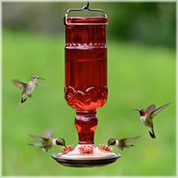 Hummingbird Feeders, Perky-Pet® Red Antique Bottle Glass Hummingbird Feeder - 2 Pack, 8119-2B2