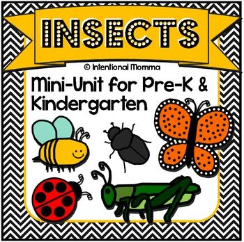 This 30-page NO PREP file features cute insects and bugs and includes math, language, worksheets, and coloring sheets and is a great supplement to your insect thematic units and centers!! Original clip art includes bumblebees, grasshoppers, beetles, ladybugs, ants, and butterflies, and students will learn simple insect facts in this mini-unit.