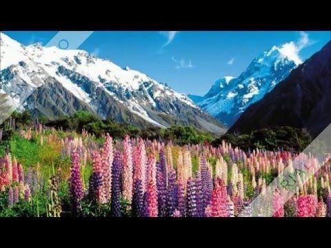Nový Zéland (New Zealand) - YouTube