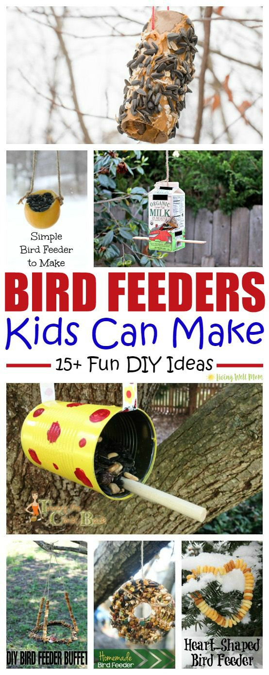 A homemade bird feeder is a wonderful way to teach kids about nature. Here's 15 bird feeders that are so simple, kids can make them as a fun activity!