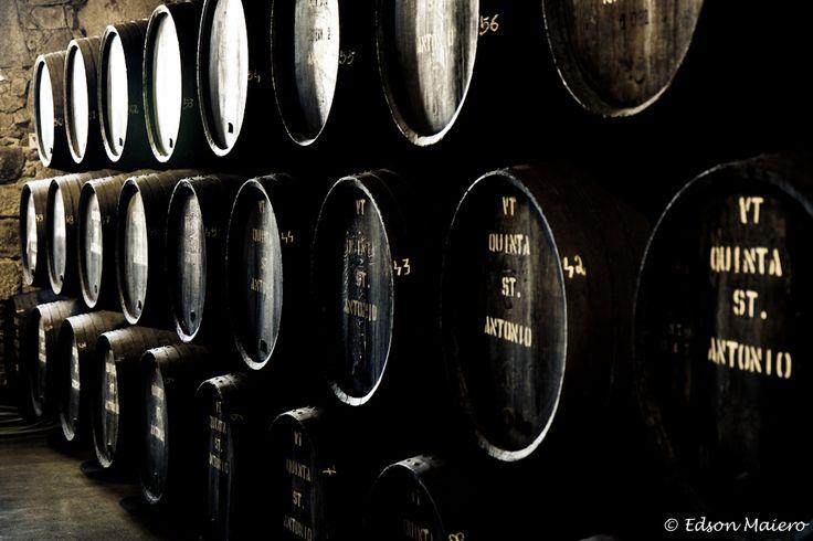 Ármazem da Quinta St Antonio: aqui eu descobri o delicíoso vinho branco do porto