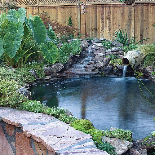 Backyard makeover includes new path, pergola, and pond - Sunset.com