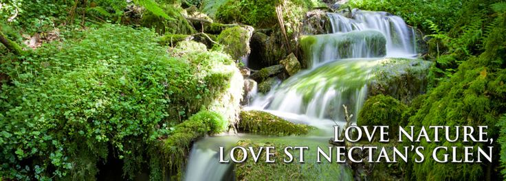 Welcome to St Nectans Glen, woodland and waterfall in CornwallSt Nectans Glen | Visit the mystical St Nectans Glen waterfall, Cornwall