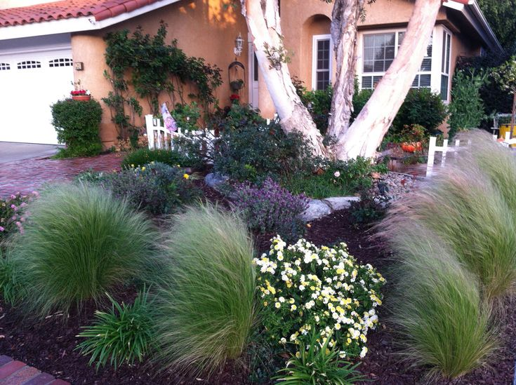 39 best images about front garden ideas on pinterest for Low maintenance herb garden