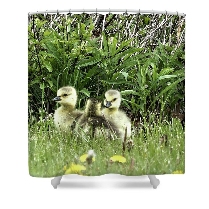 Siblings Shower Curtain by Leslie Montgomery.