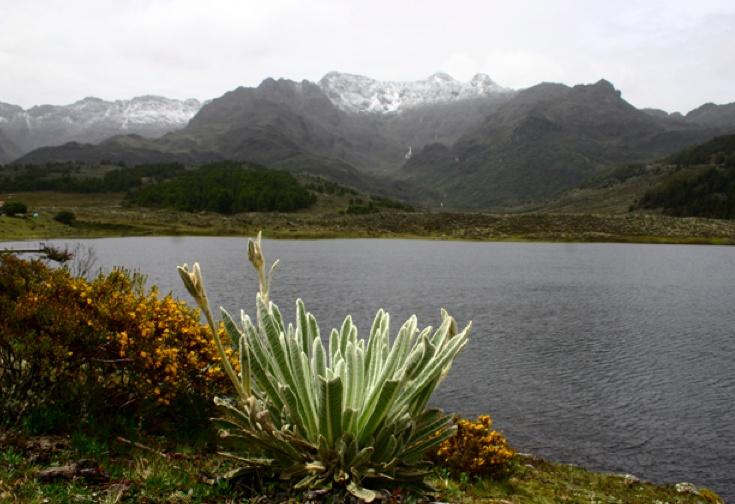 Laguna Mucubaji Merida Venezuela