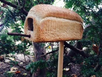 Dit broodhuisje is het droomhuis voor elke vogel. Dit heb je nodig: - Mes - Ongesneden (oud) brood - Stok of bezemsteel - Eventueel: zaden, krenten, appel, vet en takjes om te versieren 1. Hol een deel van het ongesneden brood uit (zie afbeelding) 2. Gebruik de bezemsteel of stok om het brood op te prikken 3. Je kan nu het brood versieren met zaden, krenten, stukjes appel en takjes 4. Plaats de stok met brood ergens in de tuin. Tip: zorg ervoor dat hij stevig staat.
