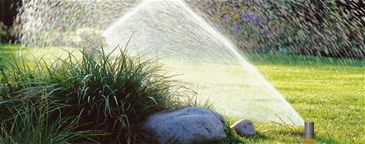 Çim Bakım Önerileri - Yaz, Çim, Çim Bakımı, Sulama