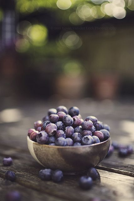 fresh picked summer blueberries.