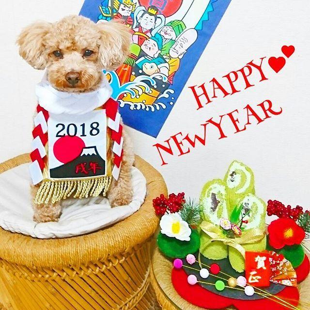 * * 新年🎍 あけましておめでとうございます🙇💕 * 戌年🐶ウォル&米粉抹茶あんこ入り門松🎍ロールケーキだョン❢❢ * お正月はなかなかスイーツ作る時間がなくて💧今年も簡単な抹茶ロールケーキ😀 美味しいからあんこを入れて作り撮影するのに📷すぐにカットしたので😅抹茶クリームがあまり固くなくてキレイなクルクル🌀にならずお正月からお見苦しい門松🎍ですみませ〜ん(ૢ˃ꌂ˂⁎)Շ^✩⃛ * だけど❤今年は❤戌年❤ ❇ウォル❇主役ฅ۶•ﻌ•*♡゛ 今年は被り物はいらないぞぉ~😁 自顔🐶で◯К♡・*:..。♡*゚¨゚゚・ だって❇犬❇だも~んbyウォル🐶💕 男らしく真剣な眼差し(๑´ლ`๑)フフ♡ * 昨年はウォル🐶も仲良くしてくださり✨いいねや優しいmessage本当に嬉しかったです🙌🎶 ありがとうございます⑅◡̈*❤ * 2018年❇皆様にとってワンU^ェ^U ダフルな年になりますように🍀🍀🍀 笑顔☺でHäppÿ引き寄せましょうネッ😚💕 * 今年もウォル共々宜しくお願いします(⁎ᴗ͈ˬᴗ͈⁎)ペコリ❤ *…