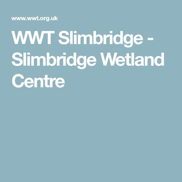 WWT Slimbridge - Slimbridge Wetland Centre