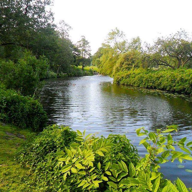 Stadtpark's Green in Hamburg!... . . #stadtpark #green #grün #park #river #hamburg #hamburgcity #hamburgliebe #hamburgmeineperle #picoftheday #photooftheday #photography #throwback #germany #norddeutschland #deutschland #greenpark #europe #elmshorn #schleswigholstein