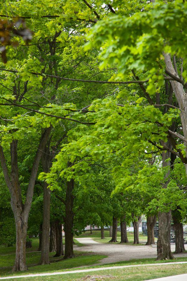 Queen's Park, Barrie, Ontario