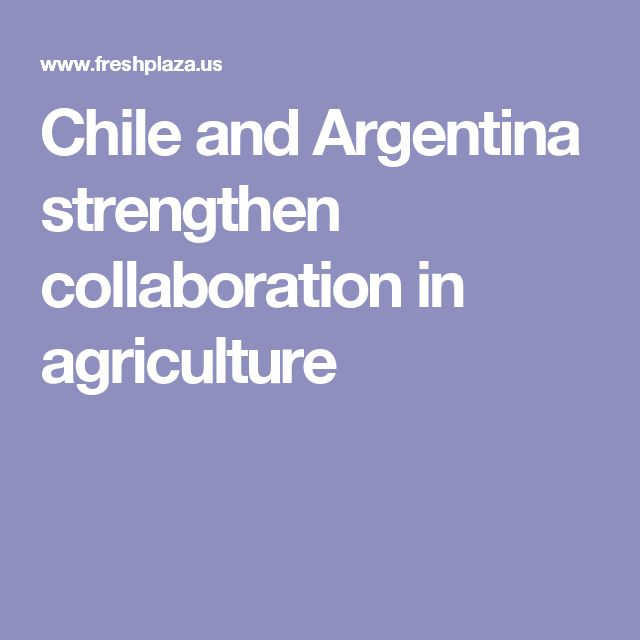 Chile and Argentina strengthen collaboration in agriculture