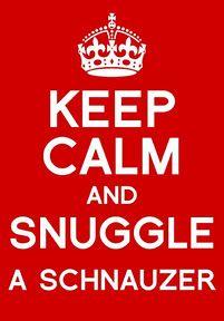 keep calm... Link: https://www.sunfrog.com/search/?64708&search=schnauzer&cID=62&schTrmFilter=sales