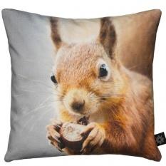 By Nord baby kussen eekhoorn koop je bij Mikkili online designbij Mikkili online design