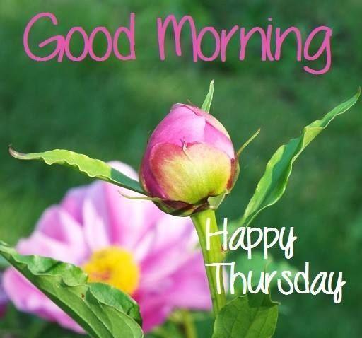 good-morning-happy-thursday
