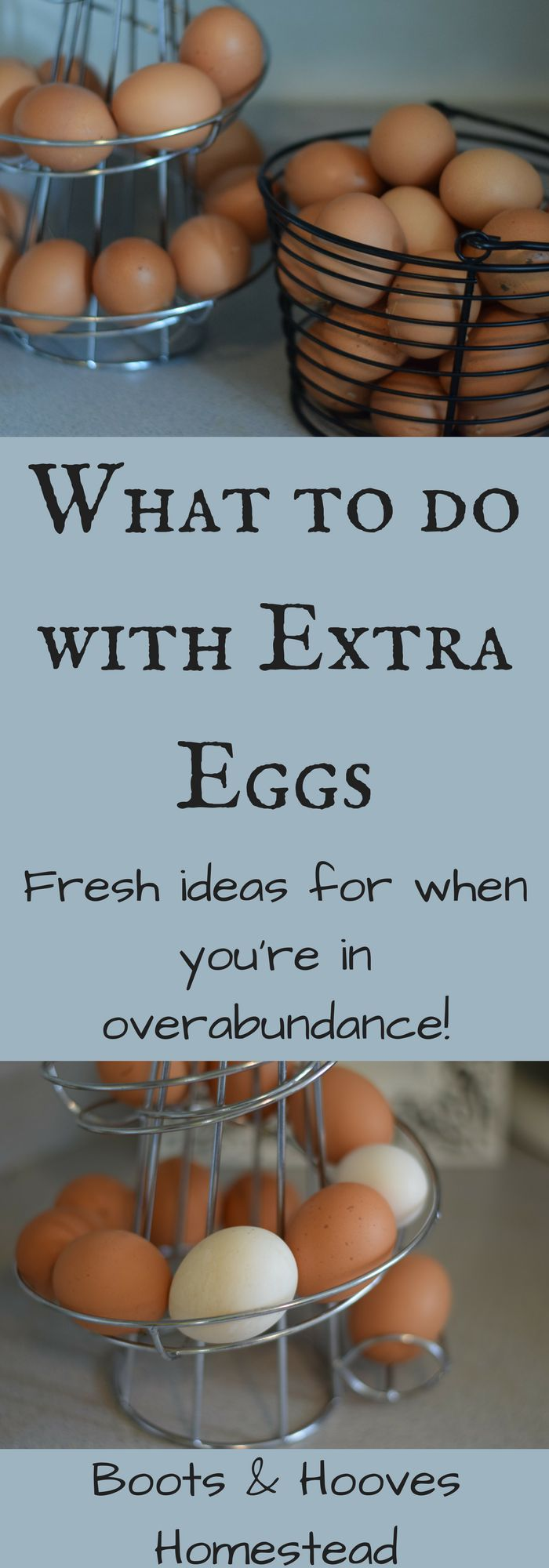 It's that time of year. The time where, for us chicken keepers, our hens our providing us with an abundance of eggs. In fact, we are currently in egg overload around here. But what to do with extra eggs? We have sold some and even given some away, but our chickens are still producing extremely …