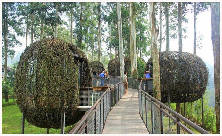 Contact us: website: www.qinanatour.com text / wa: +6281221567121 Line: @rqn4769z Instagram: qinanatour  Dusun Bambu merupakan tempat wisata favorit di Bandung. menawarkan pemandangan alam yang indah, udara sejuk, serta tersedia tempat makan atau wisata kuliner di desain seperti sarang burung, sangat unik. seperti: Sarang Lutung Kasarung, yaitu tempat yang menyerupai sarang burung membentuk seperti bulatan telur. Liburan anda akan sangat menyenangkan bersama Qinanatour.
