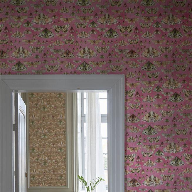 issoria - rose wallpaper