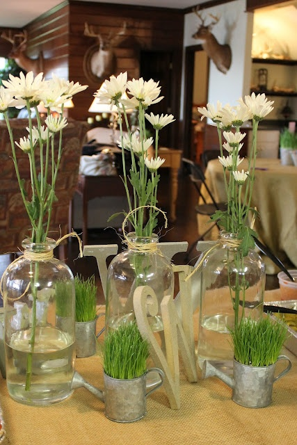 Centerpiece: Mini Galvazined Watering Cans filled with Wheat Grass