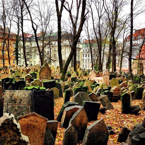 Starý židovský hřbitov | Old Jewish Cemetery