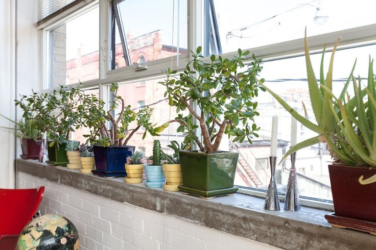 McCoy Planters in a trendy apartment.  ~ Mary Wald's Place -  Tim's Toronto Loft Filled With Plants & Collectibles