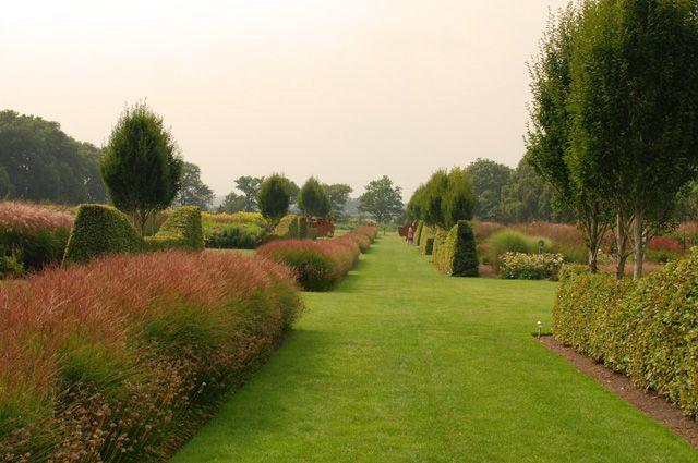 135 best sussex prairies garden images on pinterest for Landscape design sussex